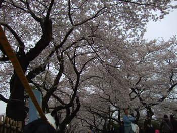 2009_04_04_015