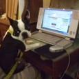 次はパソコンで事務仕事だ。